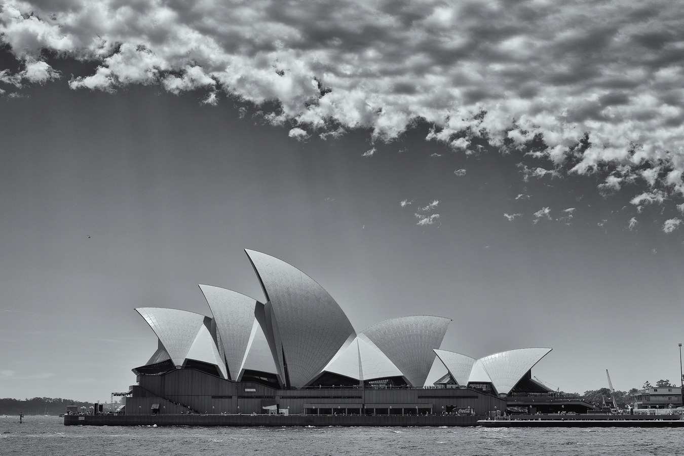 Black And White Photography Sydney