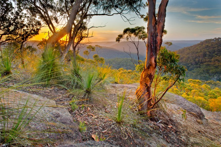 A sunset near Berowra, in Berowra Valley Regional Park, looking toward Berowra Waters