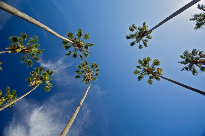 Andrew Barnes Landscape Photography - Brooklyn or Los Angeles