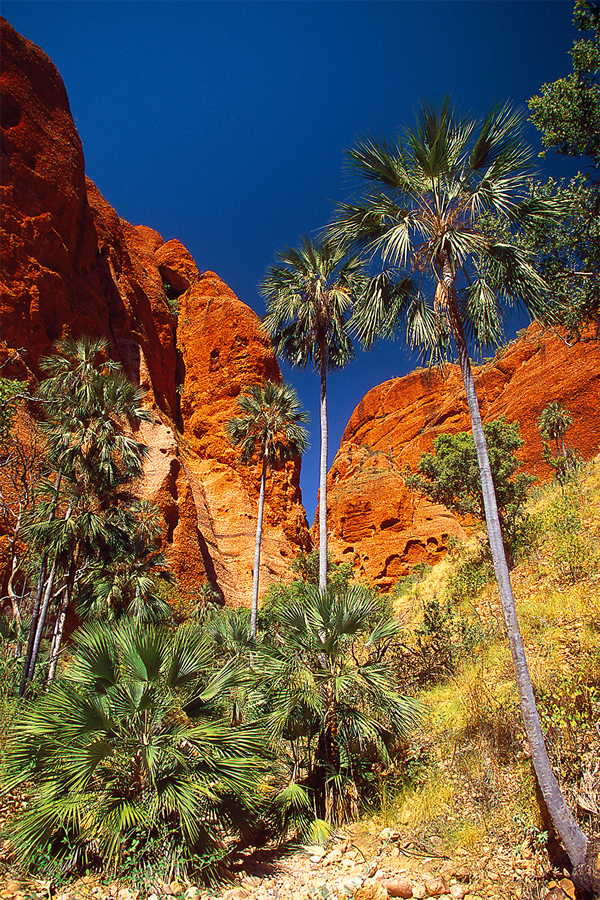 Andrew Barnes Landscape Photography, Echidna Chasm, Outback Photography