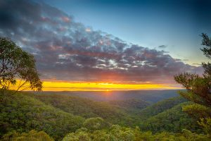 Great North Walk, Berowra, Australian Landscape Photography, Berowra Waters, Berowra Valley National Park