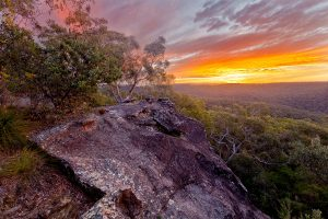 See Forever, Berowra, Australian Landscape Photography, Berowra Waters, Berowra Valley National Park