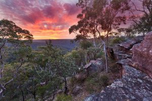 Australian Landscape Photography, Berowra Valley National Park, Sunset, Berowra