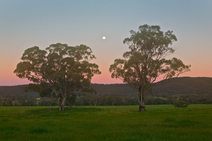 Mudgee, Andrew Barnes Landscape Photography