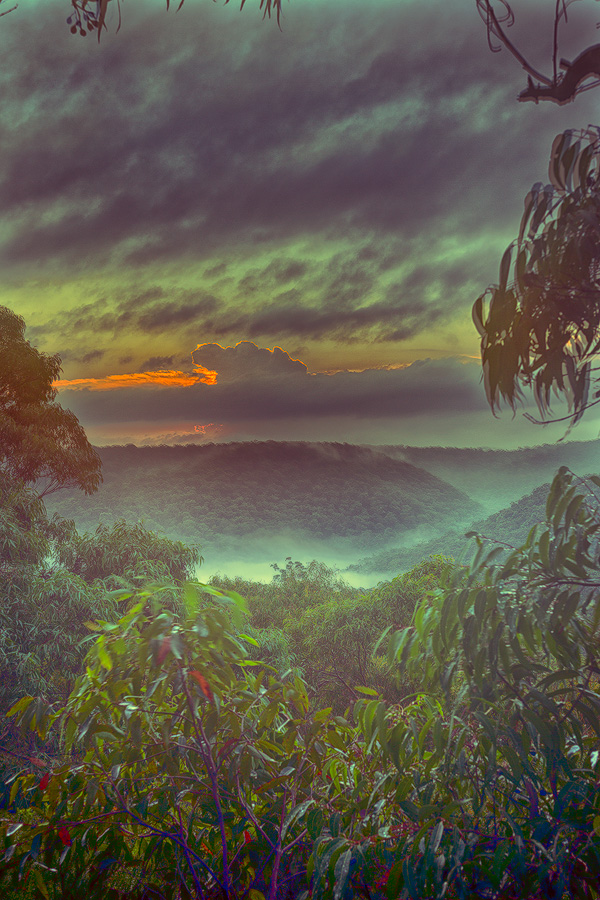 Berowra, Australian Landscape Photography, Berowra Waters, Berowra Valley National Park