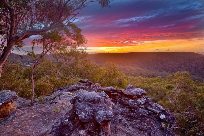 Cliffview Garden Sunset, Berowra, Australian Landscape Photography, Berowra Waters, Berowra Valley National Park