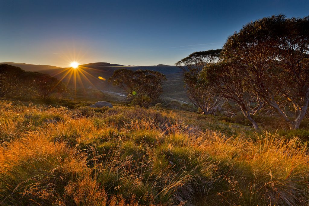 Charlotte Pass, Snowy Mountains, Kosciuszko National Park, Landscape Photography, Landscape Photographers