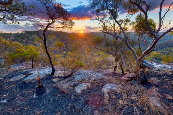 Berowra, Berowra Valley National Park, Berowra Waters, Sunset, Landscape Photography, Landscape Photography Sydney