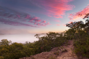 Berowra Valley Sunrise